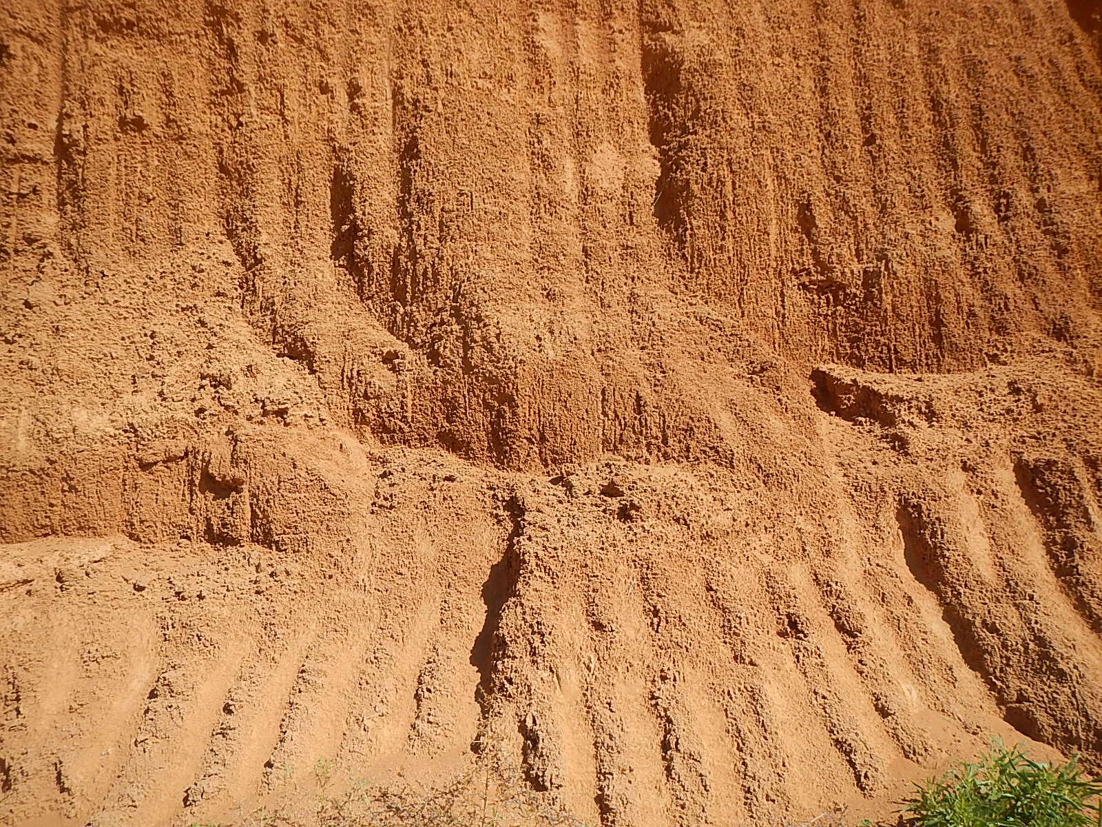 Calcrete - Limestone